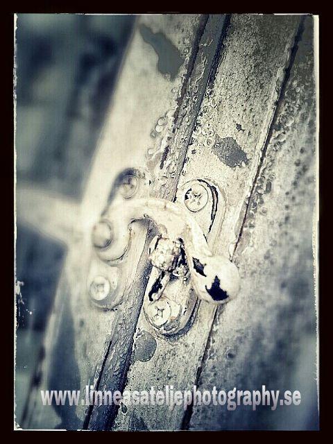 photography vintage retro black & white old photo sepia