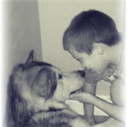 people photography pets & animals dog black & white love