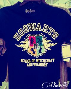 people magic united kingdom hogwarts harry potter potterhead