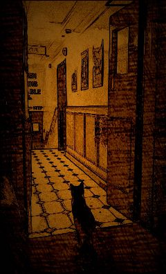 view cat cute photography sepia
