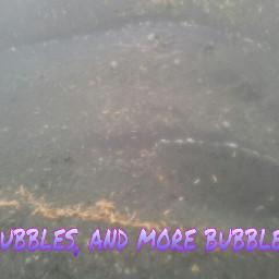 photography nature edited bubbles raindrops