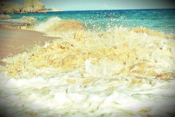 beach nature summer